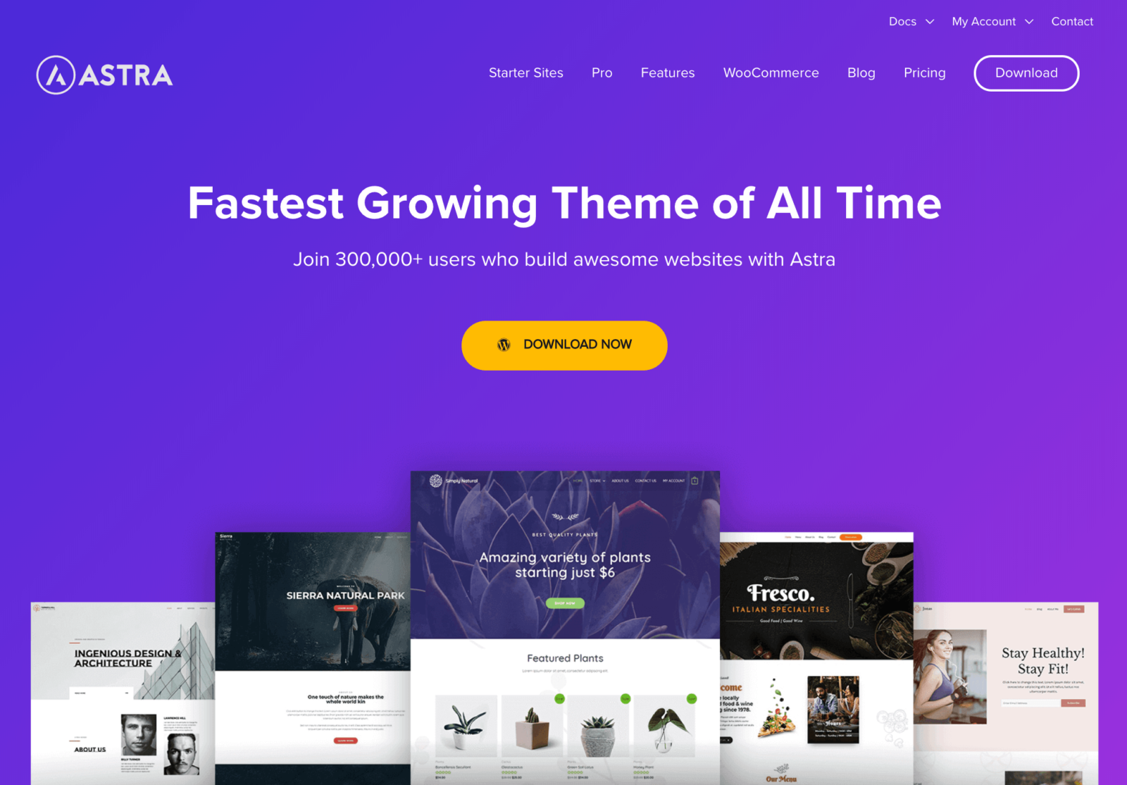 Astra Theme - Fastest Growing Theme of All Time