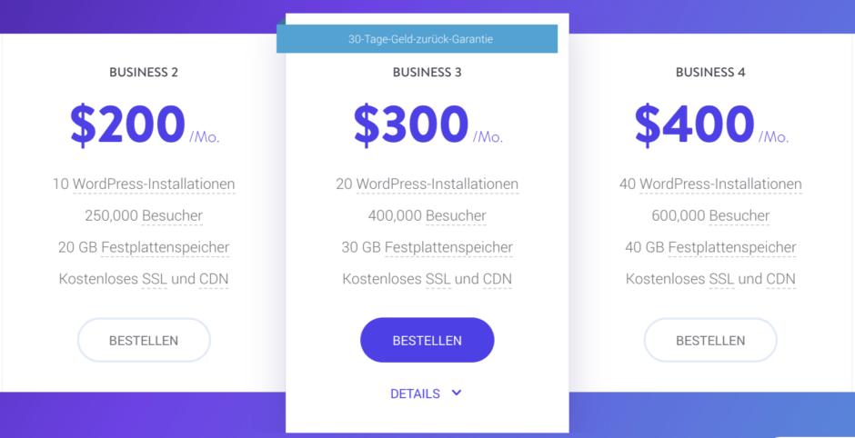 kinsta-managed-wordpress-hosting-tarife2