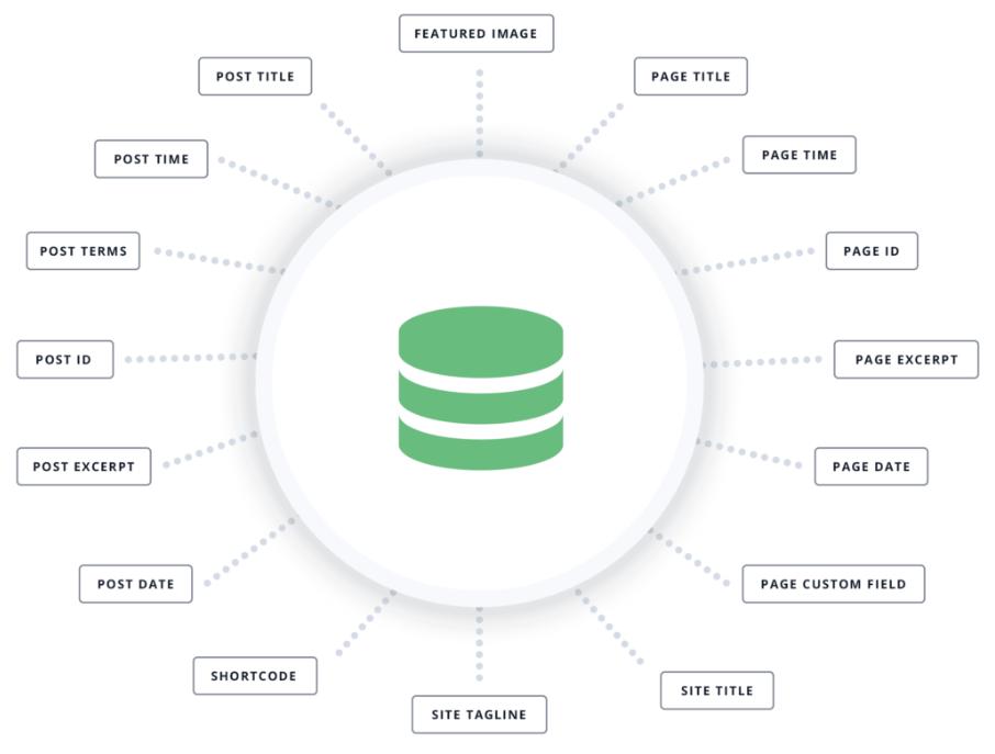 avada dynamic content Avada Theme auf Deutsch – das Top WordPress-Theme kaufen