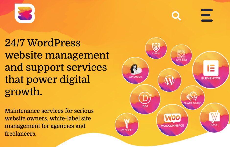 wp buffs - The best services for WordPress updates, maintenance and support