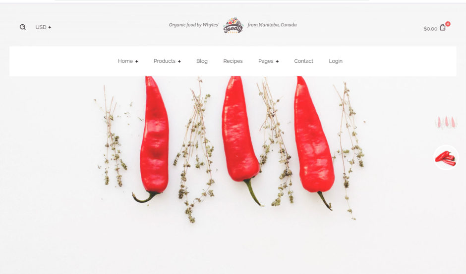 Shopify Theme Foodly