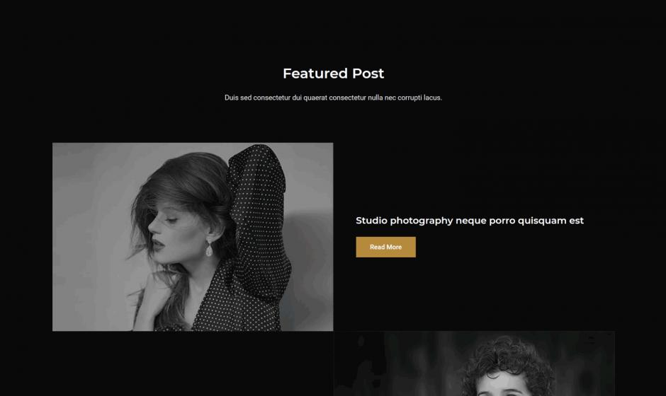 Astra Theme Layout Photographer