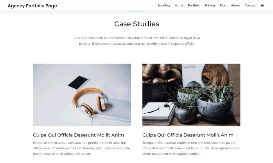 Divi Theme Agency Portfolio Page