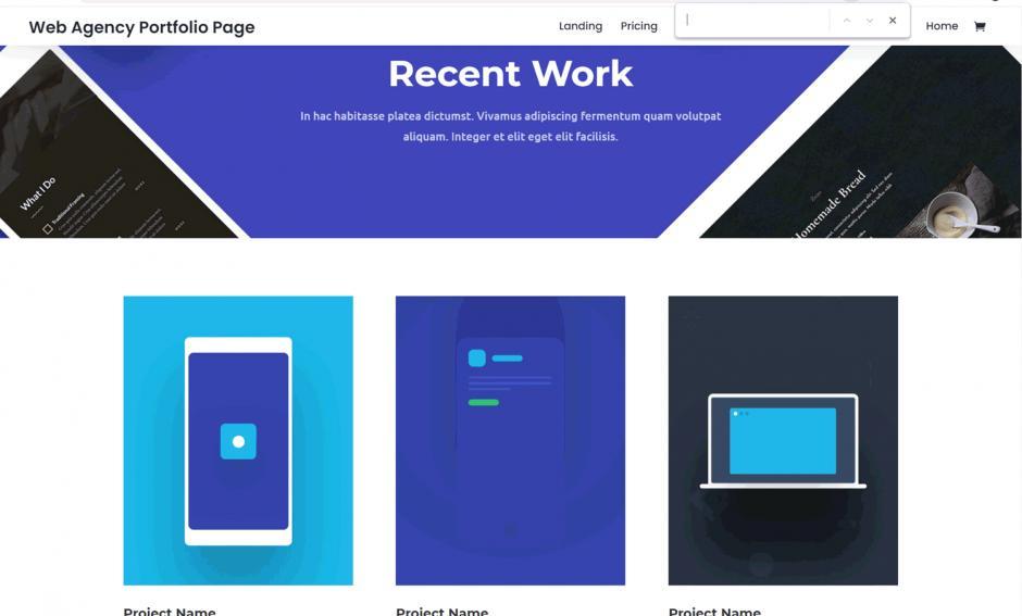 Divi Theme Web Agency Portfolio Page