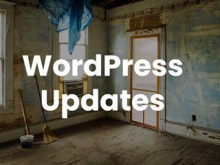 wordpress updates pexels monica silvestre 3562689 Tutorial: Updates für WordPress-Plugins durchführen & automatische Updates aktivieren