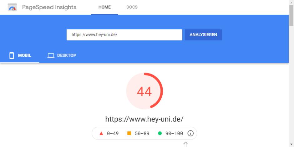 Vorher: Nur 44 Punkte in Googles PageSpeed Insights Test
