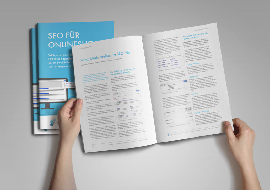Whitepaper Shop SEO PDF Download